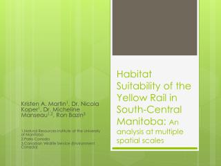Habitat Suitability of the Yellow Rail in South-Central Manitoba:  An analysis at multiple spatial scales