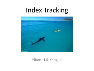 Index Tracking