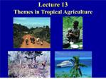 lecture 13 themes in tropical agriculture