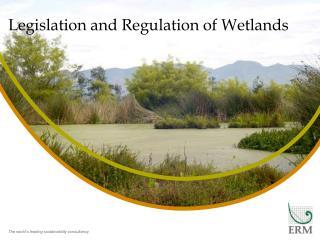 Legislation and Regulation of Wetlands