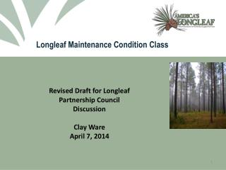 Longleaf Maintenance Condition Class