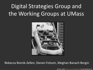 Digital Strategies Group and the Working Groups at UMass