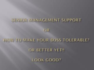 Senior Management Support or  How to make your boss tolerable? Or better yet!! Look good?
