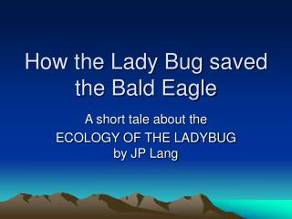 how the lady bug saved the bald eagle