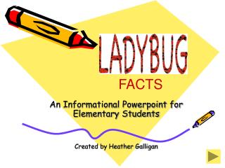 an informational powerpoint for elementary students   created by heather galligan