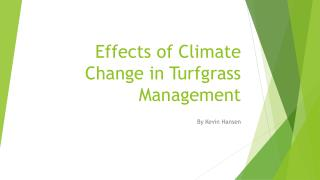 Effects of Climate Change in  Turfgrass  Management