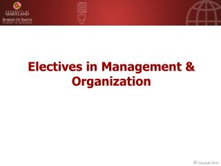 Electives in Management & Organization