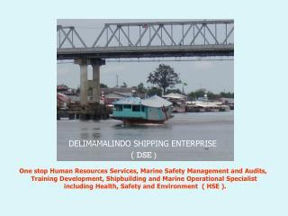 DELIMAMALINDO SHIPPING ENTERPRISE  (  DSE )