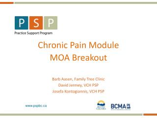 Chronic Pain Module MOA Breakout Barb  Aasen , Family Tree Clinic David  Jermey , VCH PSP Josefa Kontogiannis , VCH  PS