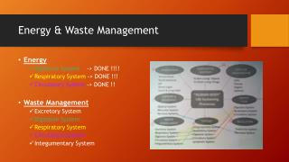 Energy & Waste Management