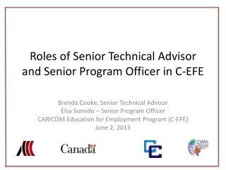 Roles  of Senior Technical  Advisor and Senior Program Officer in C-EFE