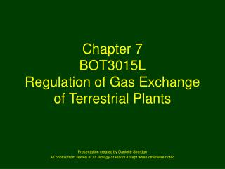 chapter 7 bot3015l regulation of gas exchange of terrestrial plants