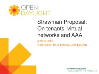 Strawman  Proposal: On tenants, virtual networks and AAA