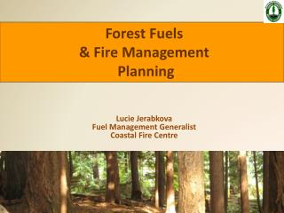 Lucie Jerabkova Fuel Management Generalist Coastal Fire Centre