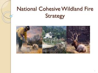 National Cohesive  Wildland  Fire Strategy