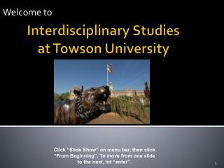 Interdisciplinary Studies  at Towson University