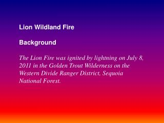Lion Wildland Fire Background