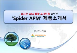 실시간  WAS  통합 모니터링  솔루션 'Spider APM'  제품소개서