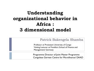 Understanding organizational  behavior  in Africa :  3  d imensional  model