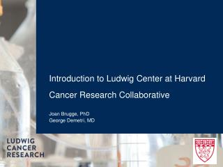 Introduction to Ludwig Center at Harvard  Cancer Research Collaborative