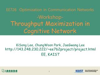 EE726  Optimization in Communication Networks -Workshop- Throughput Maximization in Cognitive Network
