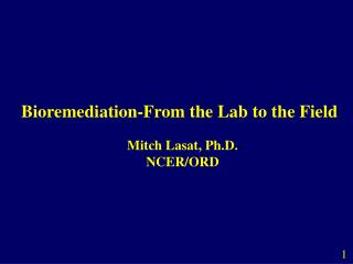 bioremediation-from the lab to the field