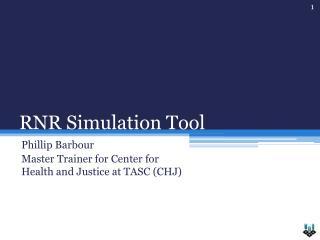 RNR Simulation Tool