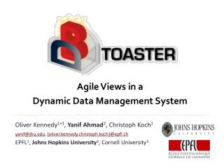 Agile Views in a  Dynamic Data Management System