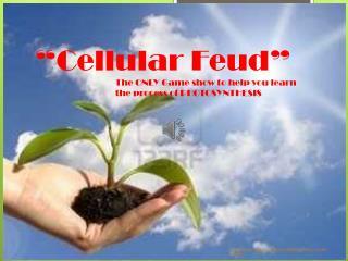 """""""Cellular Feud"""""""