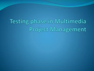 Testing phase in Multimedia Project Management