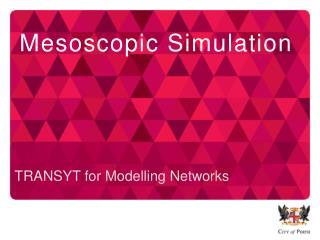 Mesoscopic  Simulation