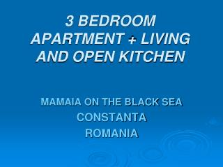 3 bedroom apartment  living and open kitchen