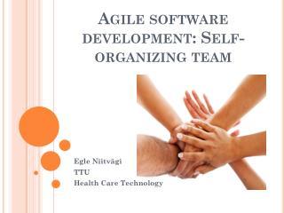 Agile software development:  Self-organizing  team