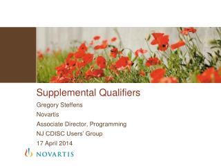 Supplemental Qualifiers