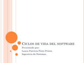 Ciclos de vida del software