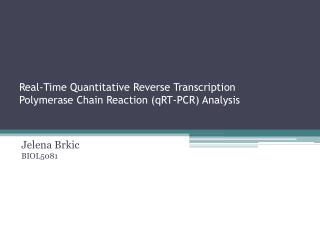 Real-Time Quantitative Reverse Transcription  Polymerase Chain Reaction ( qRT -PCR) Analysis