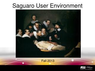 Saguaro User Environment