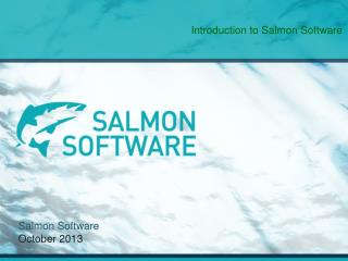 Salmon Software October  2013
