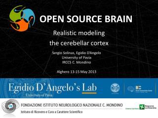 Realistic modeling the  cerebellar cortex