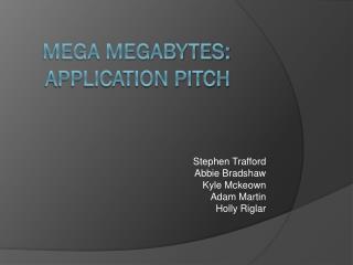 Mega Megabytes: Application pitch