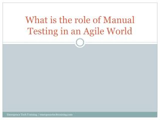 What is the role of Manual Testing in an Agile World