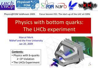 Physics with bottom  quarks:  The  LHCb  experiment