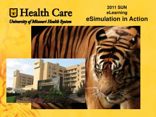 2011 SUN  eLearning eSimulation  in Action