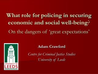 what role for policing in securing economic and social well-being  on the dangers of  great expectations