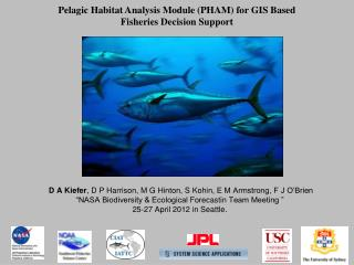 Pelagic Habitat Analysis Module (PHAM) for GIS Based  Fisheries Decision Support
