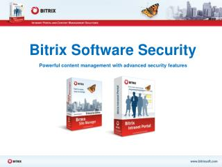 Bitrix Software Security