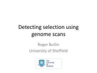 Detecting selection using genome scans