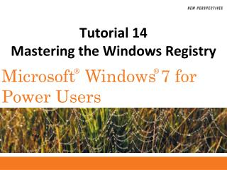 Tutorial 14 Mastering the Windows Registry