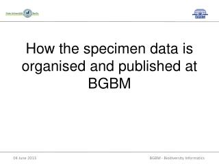 H ow the specimen data is organised and published at  BGBM