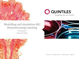 Modelling and simulation SIG (brainstorming) meeting